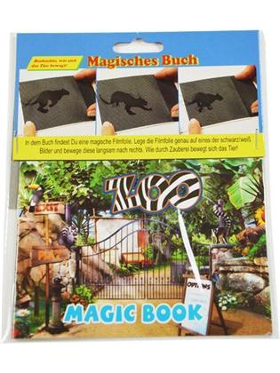 Magisches Buch1